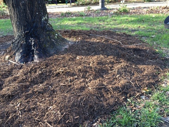 A Three-Step Process to Managing Mulch