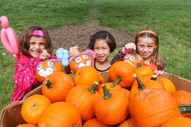 Top Fall Festivals and Events in Richmond and Williamsburg