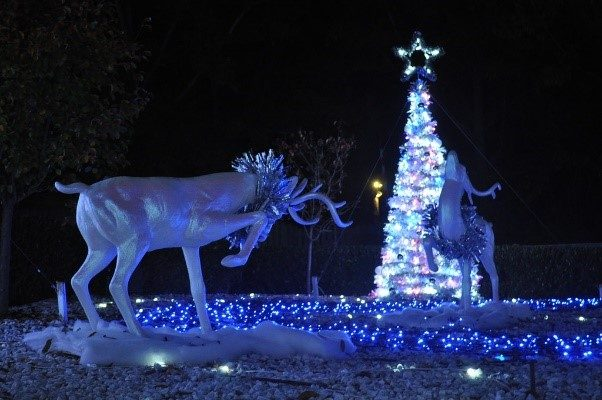 Celebrate the Holidays in Richmond and Williamsburg