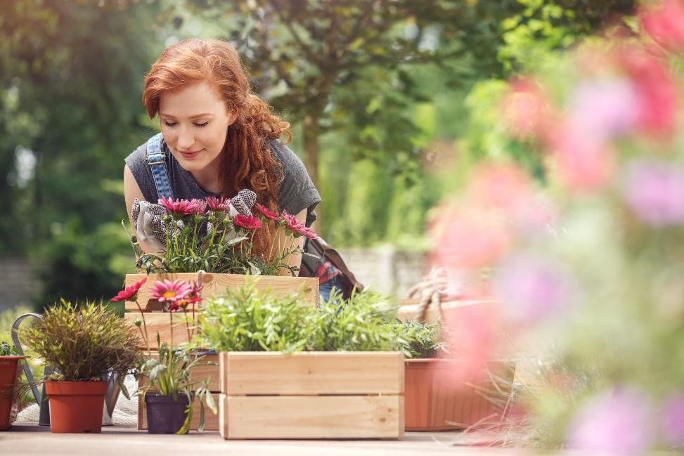 Spring Gardening And Planting Tips